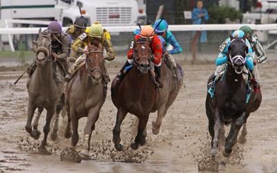 Horse Racing Weather