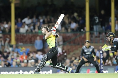 Glen Maxwell T20 Cricket