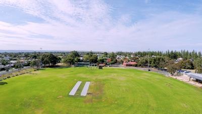 Cricket Bright Day