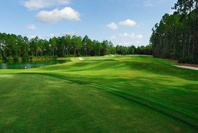 Golf Course Setup
